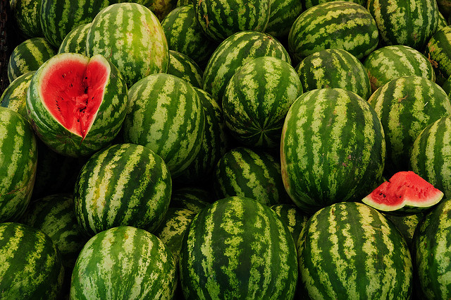 World's Best Water Melons