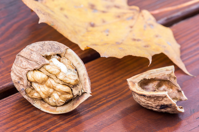 8 Health Benefits Of Walnuts