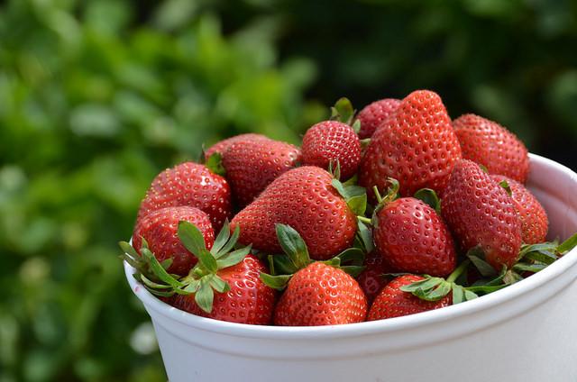 7 Foods Thatll Calm You Down