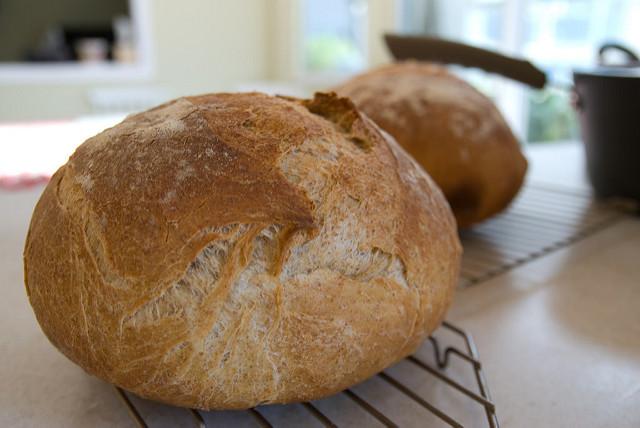 5 Healthy Homemade Bread Recipe Ideas