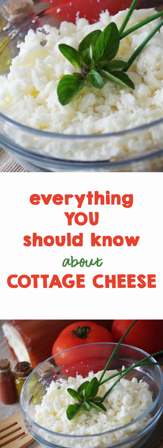 Everything You Should Know About Cottage Cheese