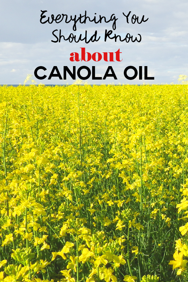 Everything You Should Know About Canola Oil